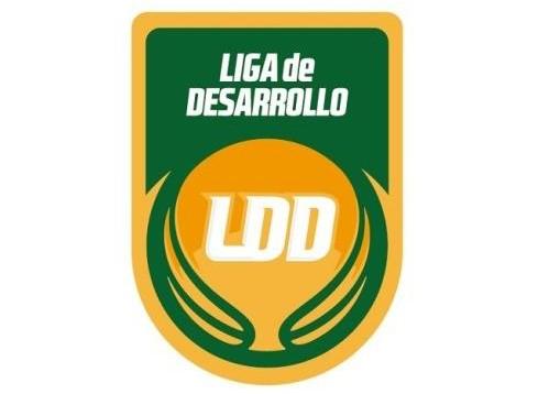 La Liga de Desarrollo es un gran desafío para los clubes.