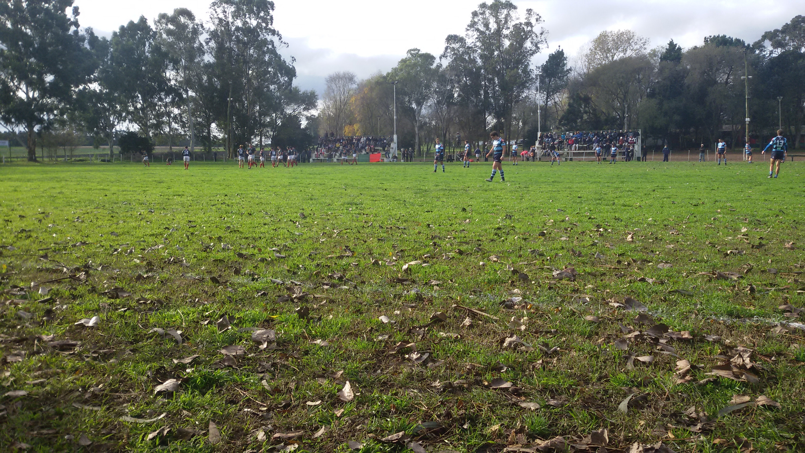 El rugby no tendrá actividad el fin de semana. (Foto: Prensa URMDP)